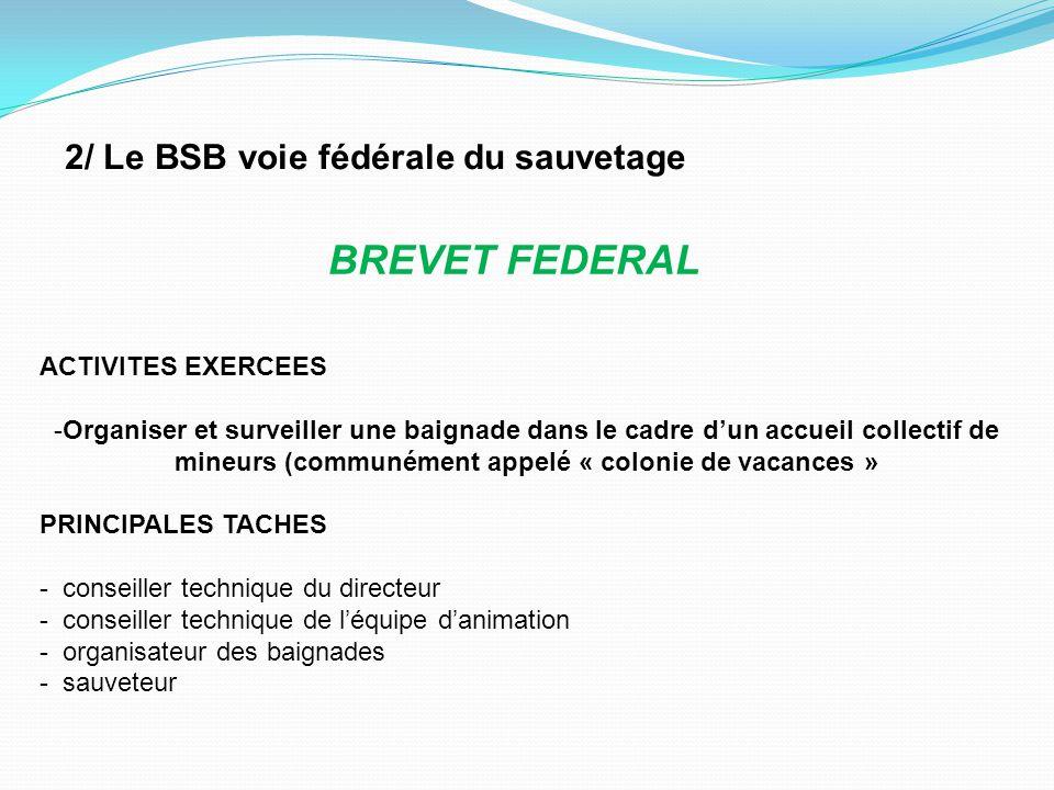 BREVET FEDERAL 2/ Le BSB voie fédérale du sauvetage ACTIVITES EXERCEES