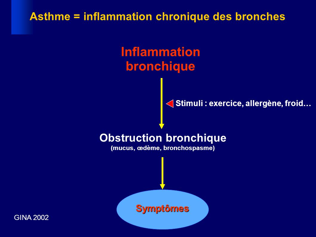 Inflammation bronchique