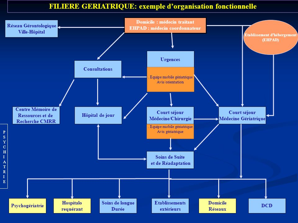 FILIERE GERIATRIQUE: exemple d'organisation fonctionnelle