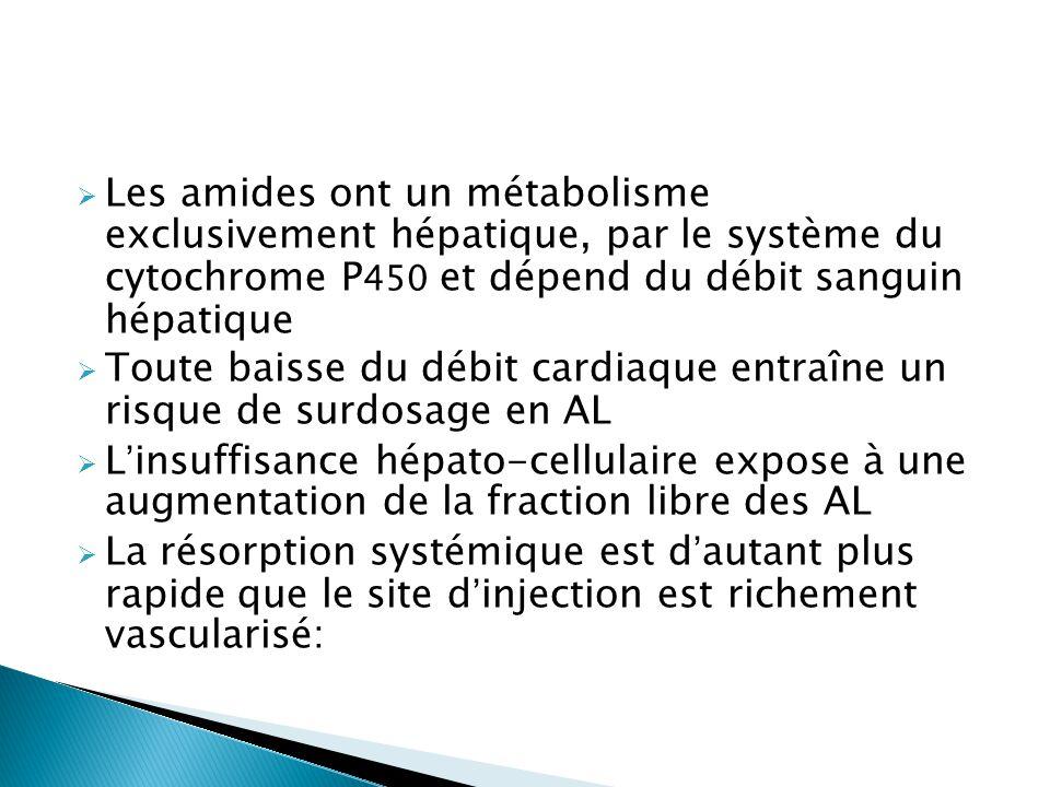 Les amides ont un métabolisme exclusivement hépatique, par le système du cytochrome P450 et dépend du débit sanguin hépatique