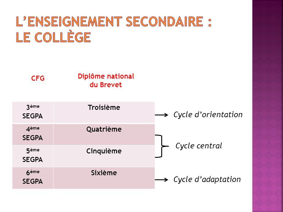 L'enseignement Secondaire : Le collège
