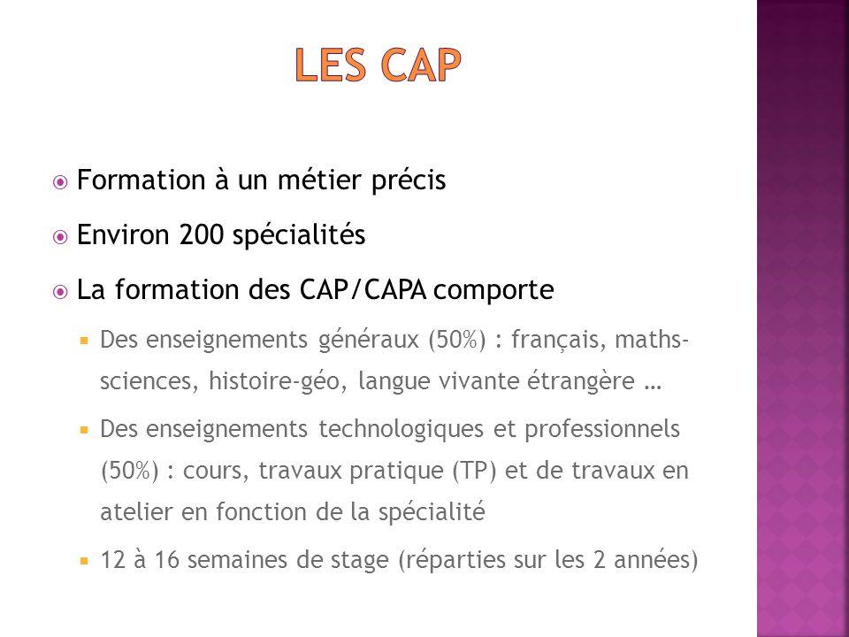 Les CAP Formation à un métier précis Environ 200 spécialités