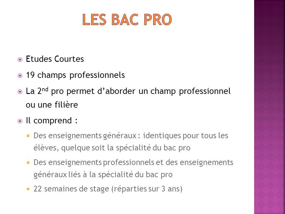 Les BAC Pro Etudes Courtes 19 champs professionnels