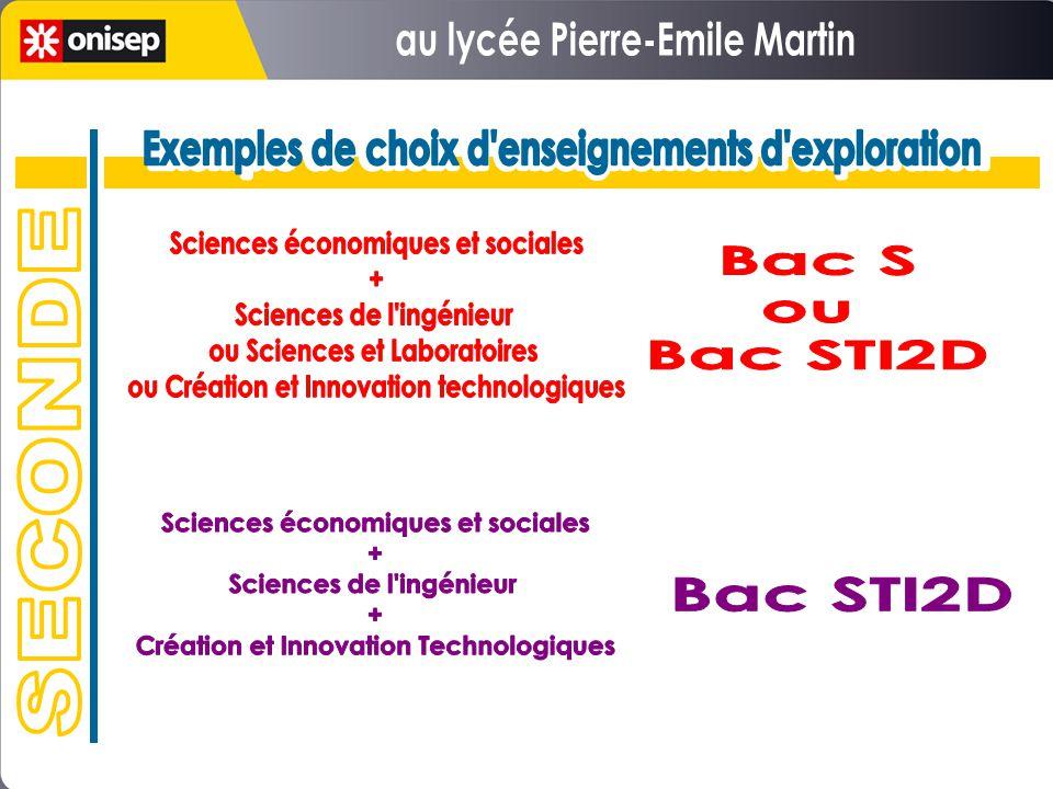 au lycée Pierre-Emile Martin