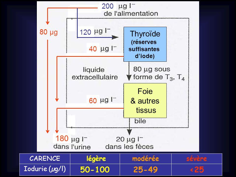 Thyroïde Foie & autres tissus 180 50-100 25-49 <25 200 80 µg 120 40