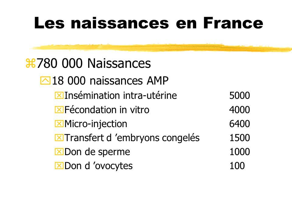 Les naissances en France