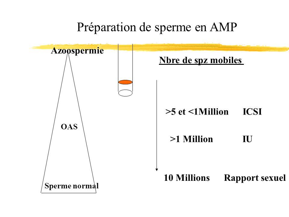 Préparation de sperme en AMP