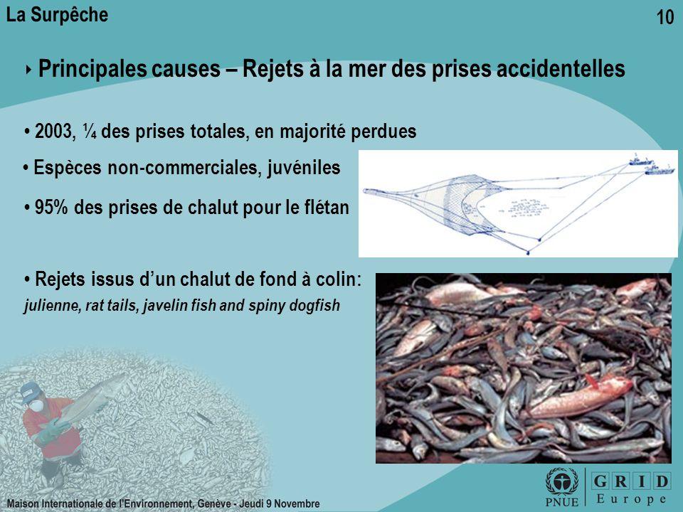 ‣ Principales causes – Rejets à la mer des prises accidentelles