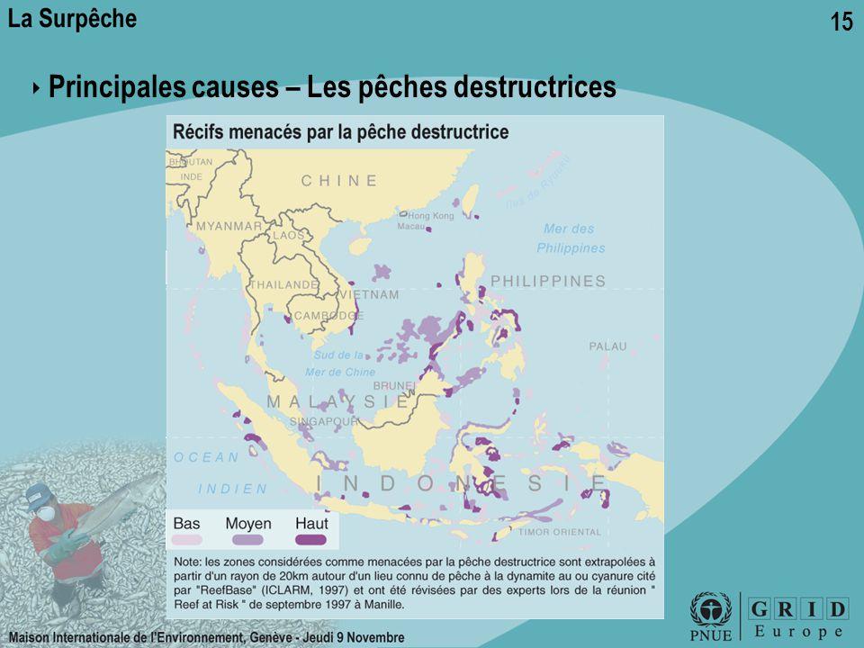 ‣ Principales causes – Les pêches destructrices
