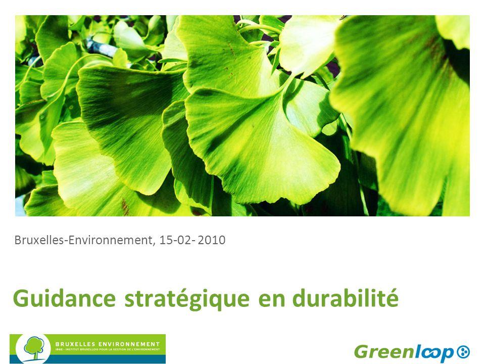 Guidance stratégique en durabilité