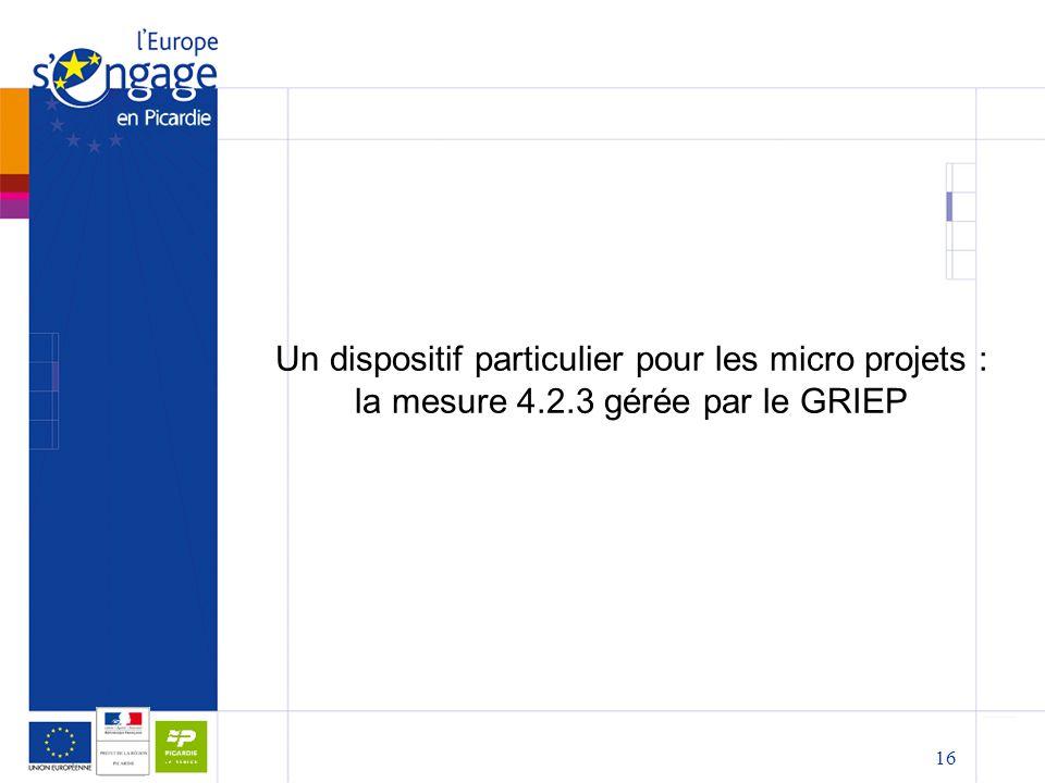 Un dispositif particulier pour les micro projets : la mesure 4. 2