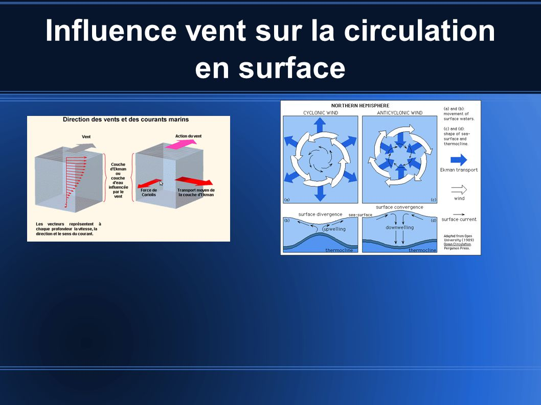 Influence vent sur la circulation en surface