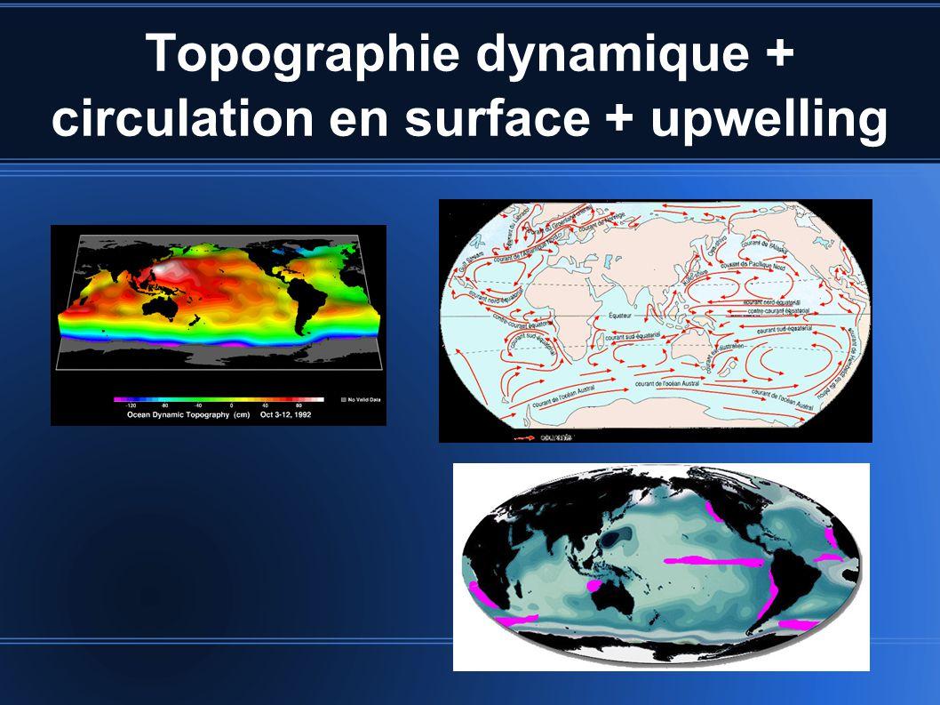 Topographie dynamique + circulation en surface + upwelling