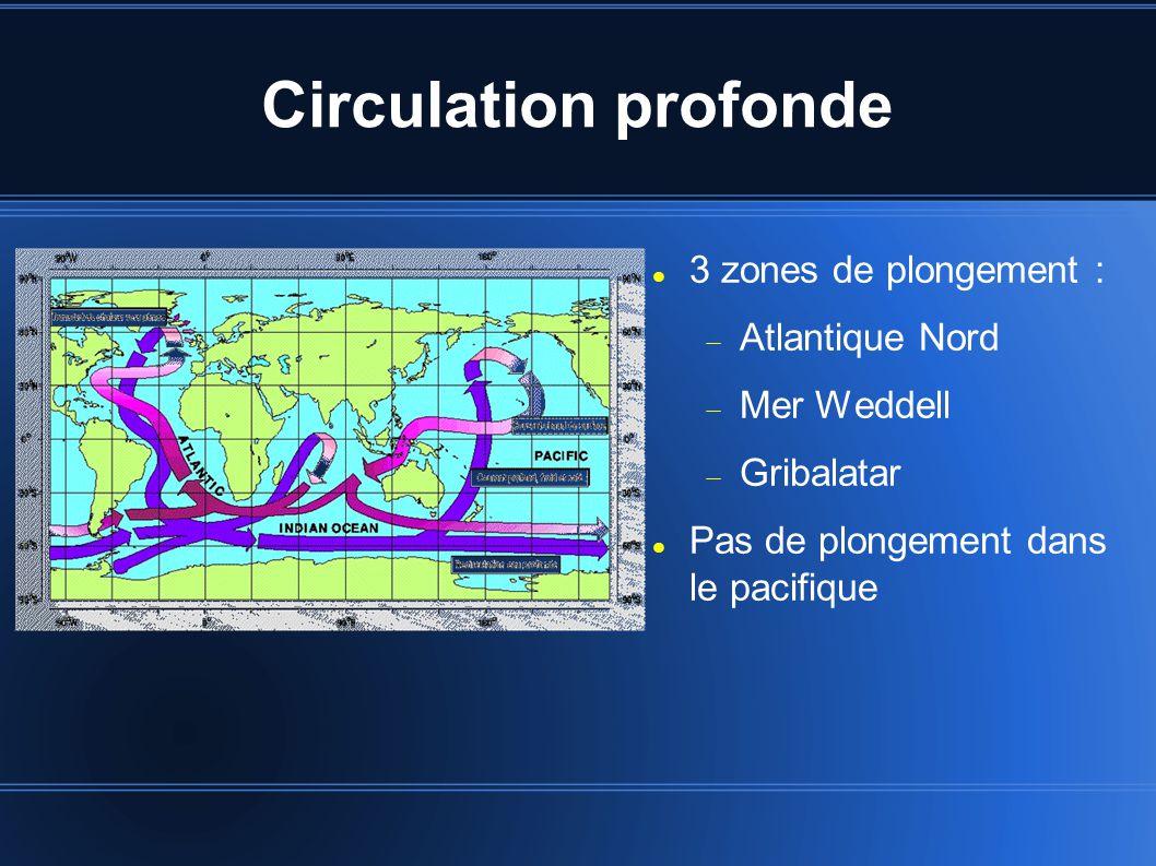 Circulation profonde 3 zones de plongement : Atlantique Nord