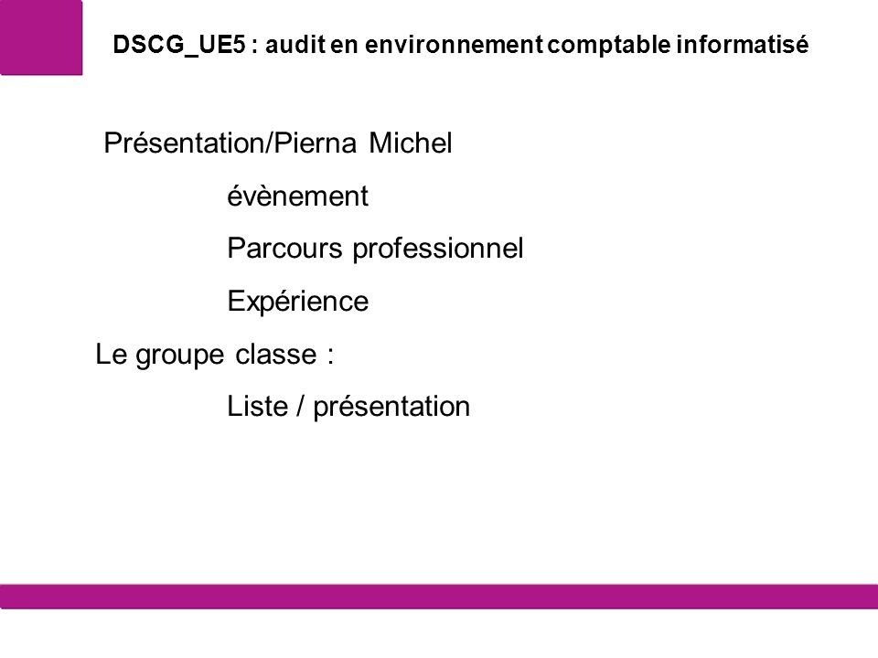 DSCG_UE5 : audit en environnement comptable informatisé