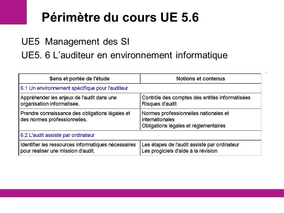Périmètre du cours UE 5.6 UE5 Management des SI