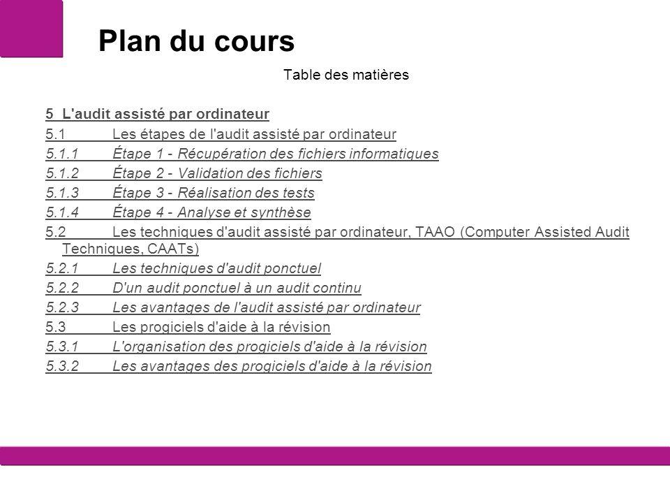 Plan du cours Table des matières 5 L audit assisté par ordinateur