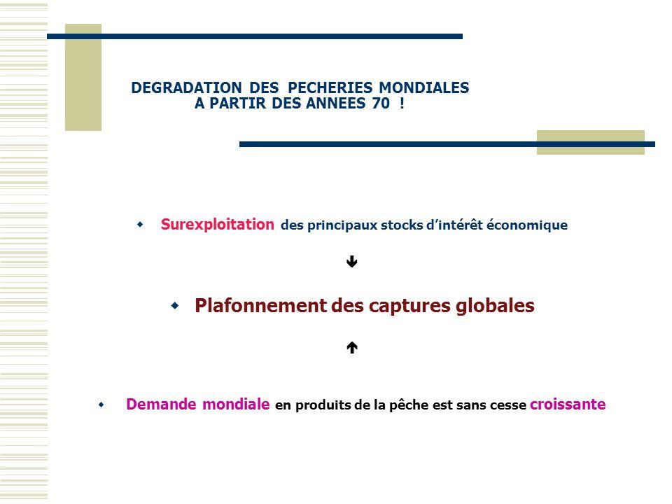 DEGRADATION DES PECHERIES MONDIALES A PARTIR DES ANNEES 70 !