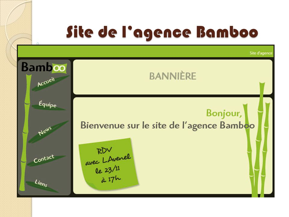 Site de l'agence Bamboo