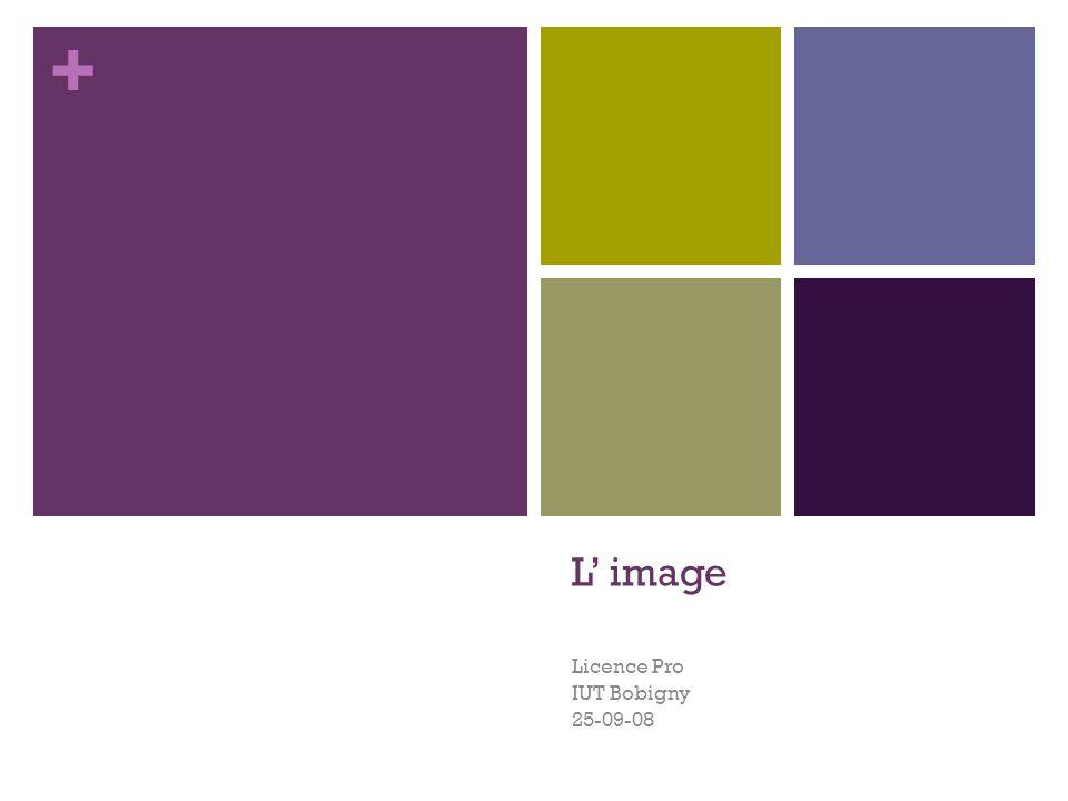 Licence Pro IUT Bobigny 25-09-08