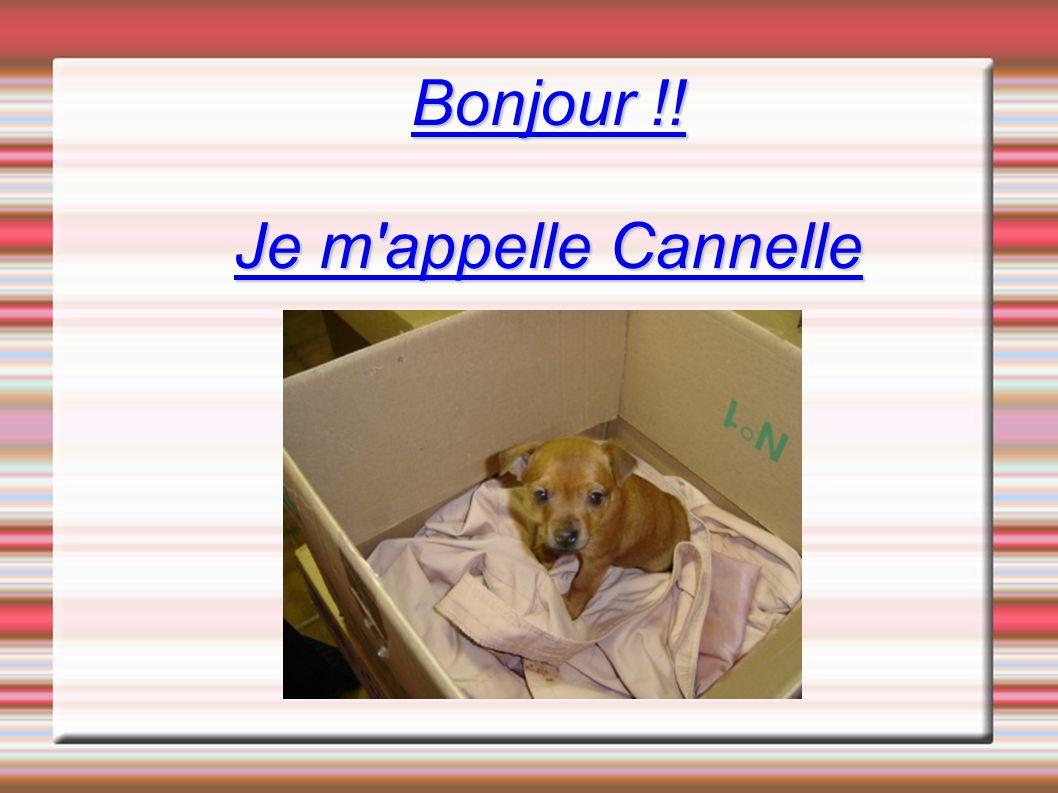 Bonjour !! Je m appelle Cannelle