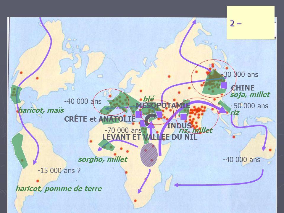 2 – -30 000 ans CHINE soja, millet blé -40 000 ans MESOPOTAMIE