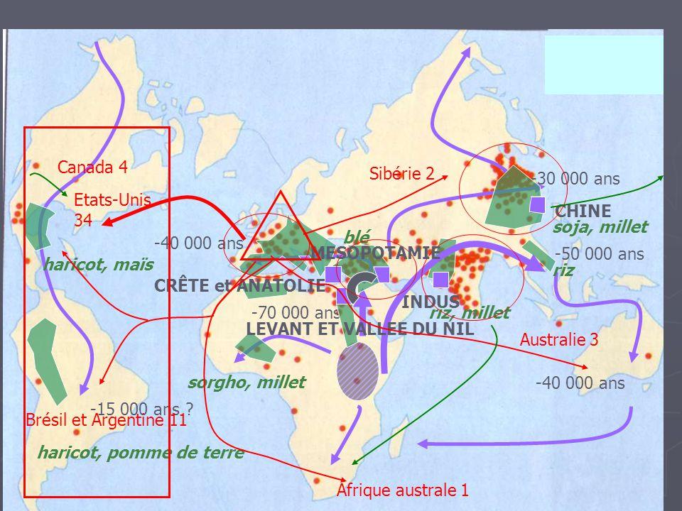 Canada 4 Sibérie 2. -30 000 ans. Etats-Unis 34. CHINE. soja, millet. blé. -40 000 ans. MESOPOTAMIE.