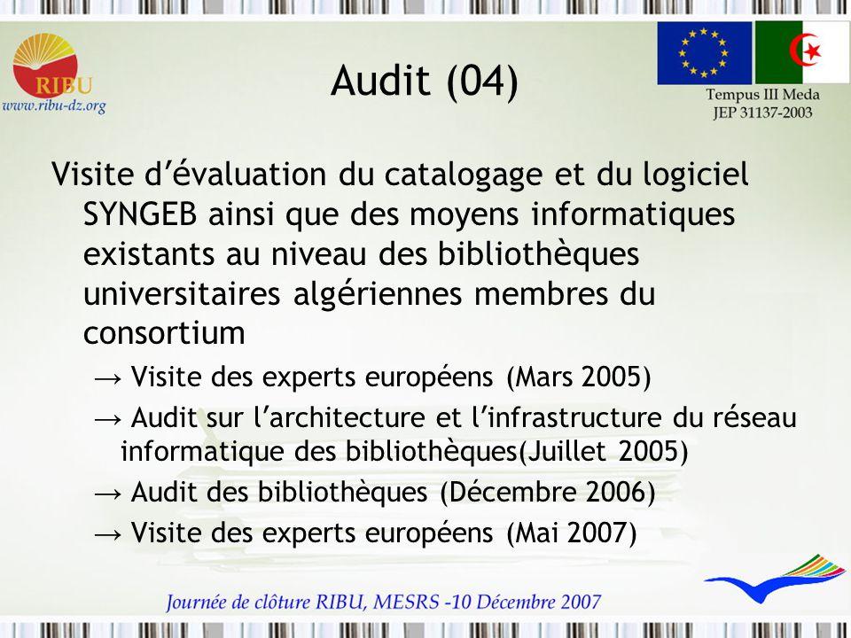 Audit (04)