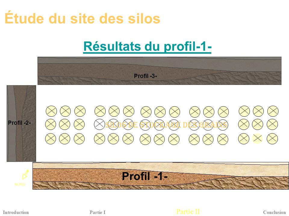 Étude du site des silos Résultats du profil-1- Profil -1-
