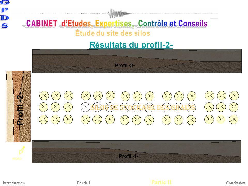 Résultats du profil-2- Profil -2-