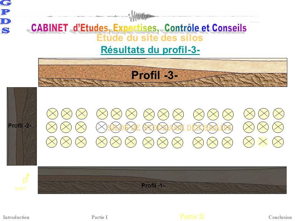 Profil -3- Étude du site des silos Résultats du profil-3-