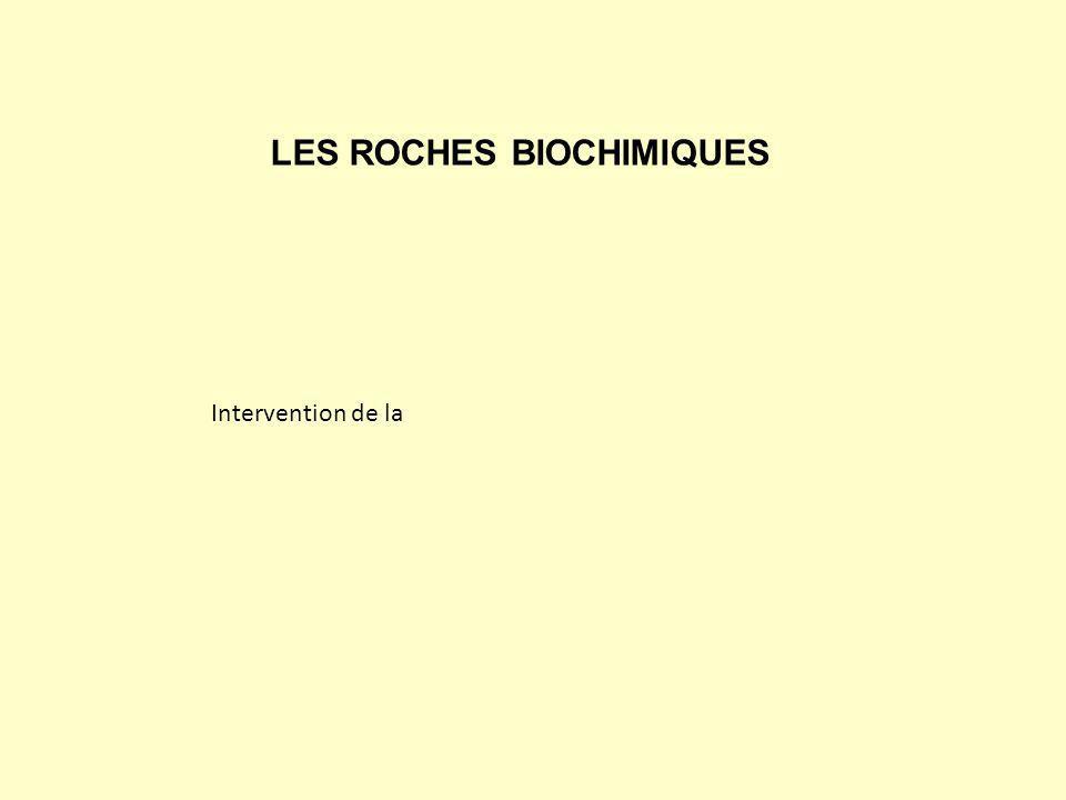 LES ROCHES BIOCHIMIQUES