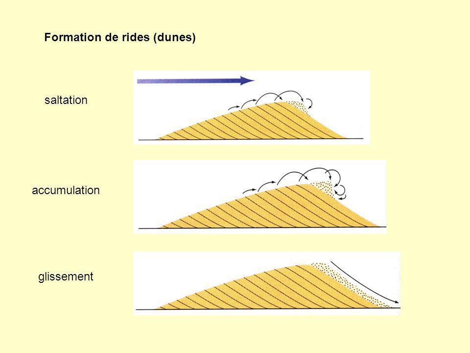 Formation de rides (dunes)