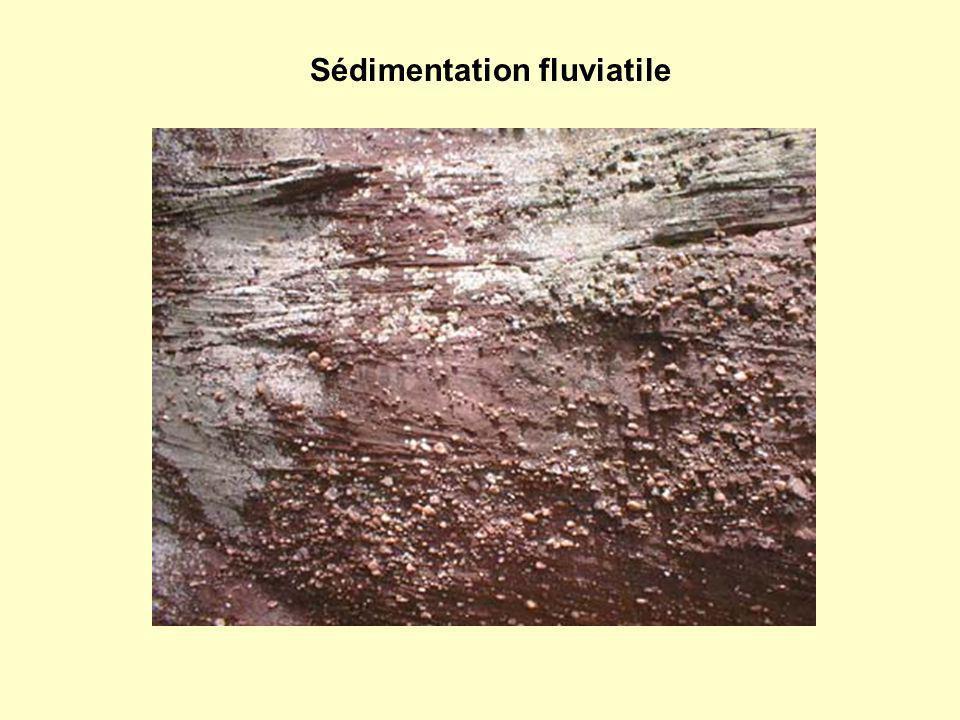 Sédimentation fluviatile