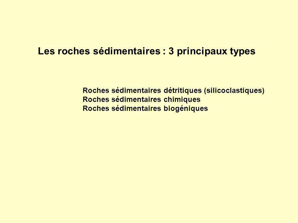 Les roches sédimentaires : 3 principaux types