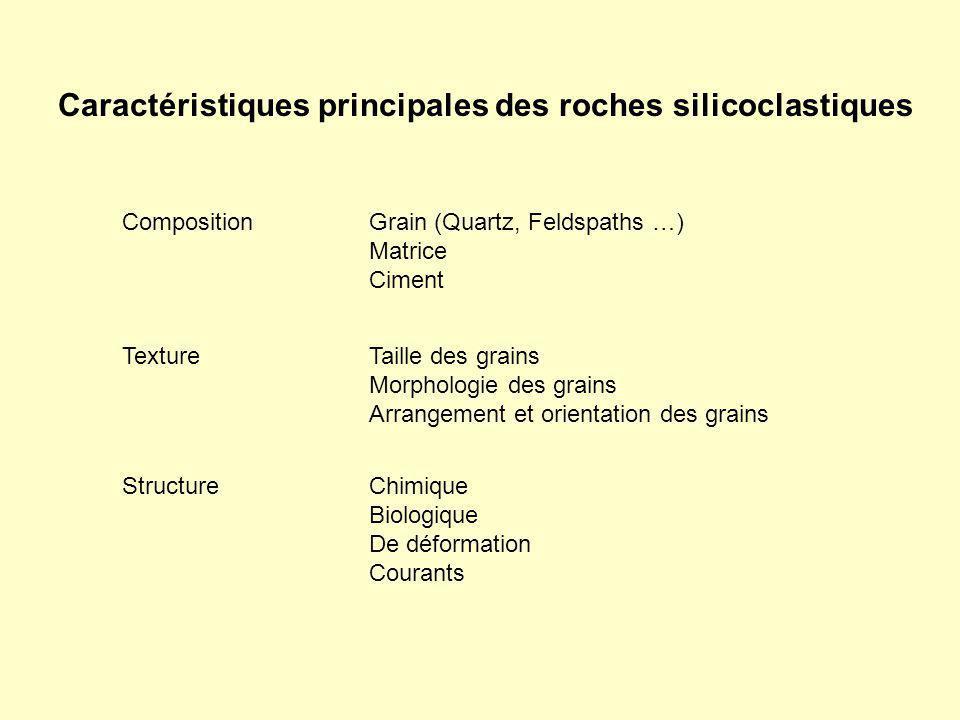 Caractéristiques principales des roches silicoclastiques