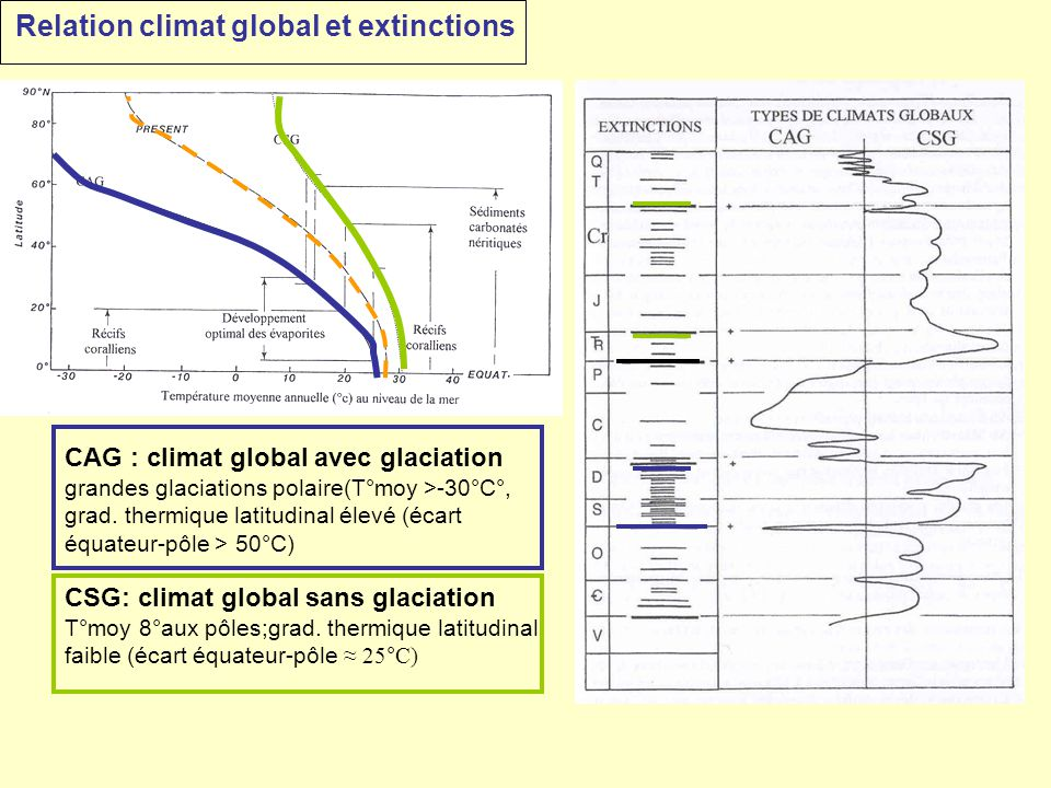 Relation climat global et extinctions