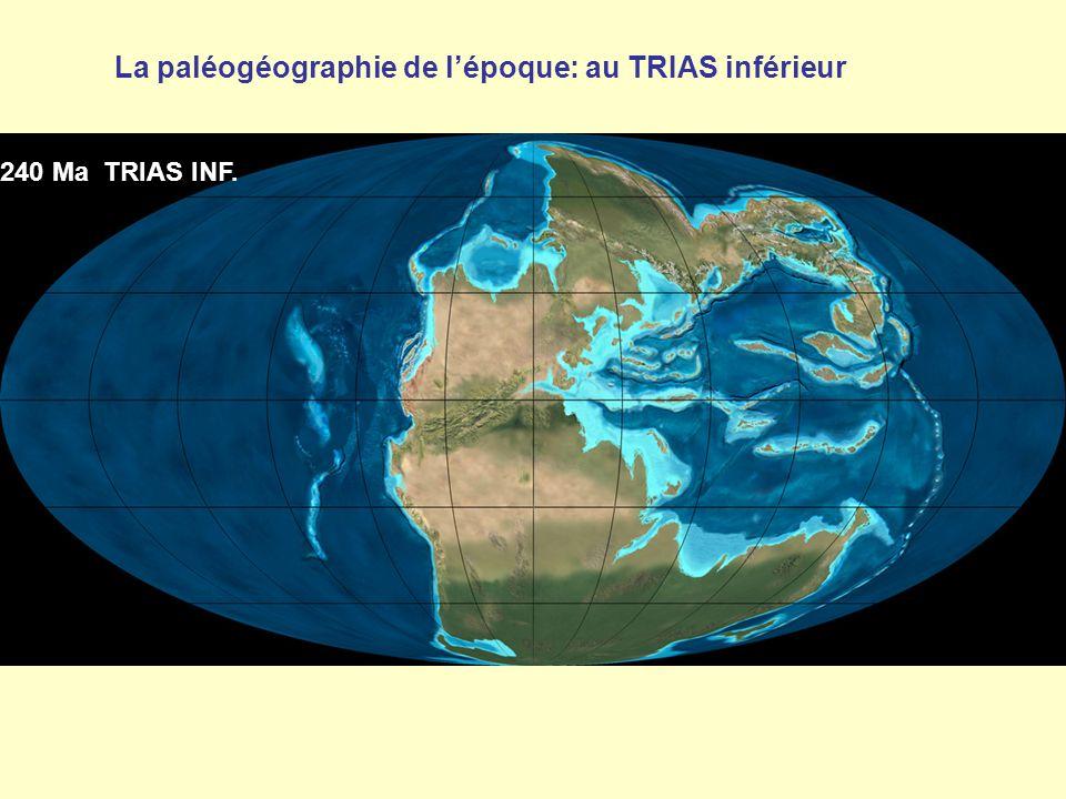 La paléogéographie de l'époque: au TRIAS inférieur