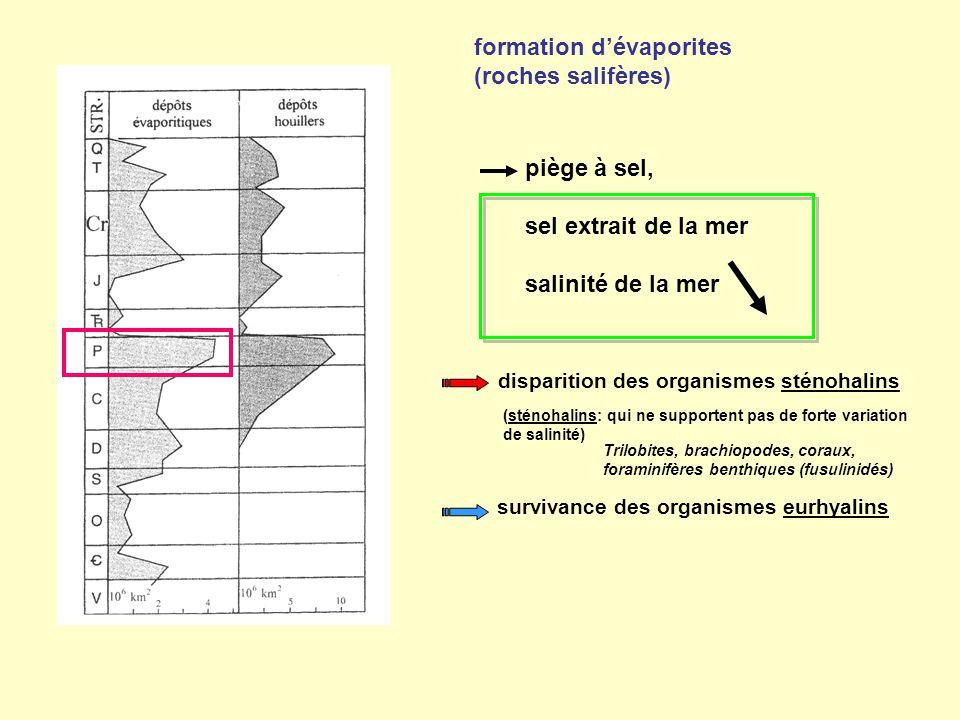 formation d'évaporites (roches salifères)