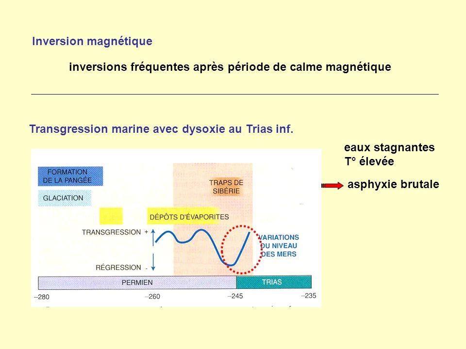 inversions fréquentes après période de calme magnétique