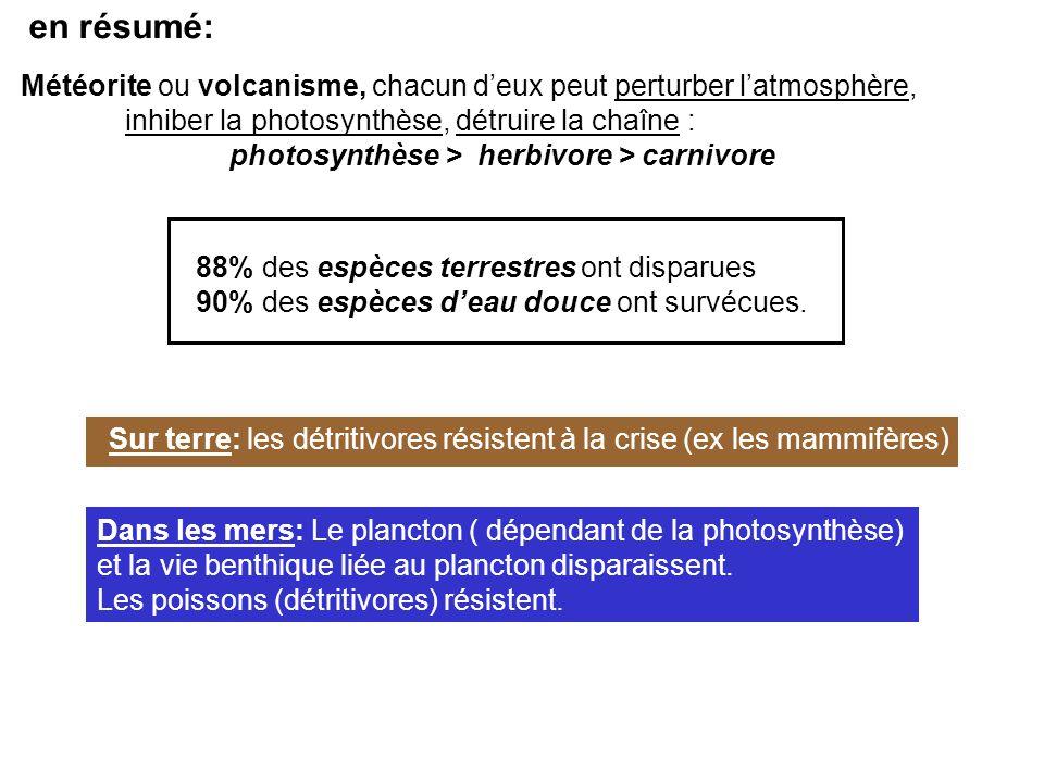 en résumé: Météorite ou volcanisme, chacun d'eux peut perturber l'atmosphère, inhiber la photosynthèse, détruire la chaîne :