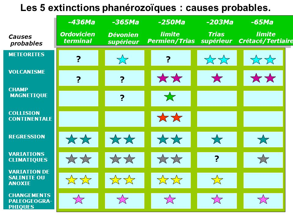 Les 5 extinctions phanérozoïques : causes probables.