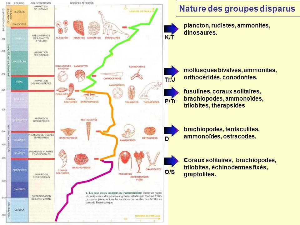 Nature des groupes disparus
