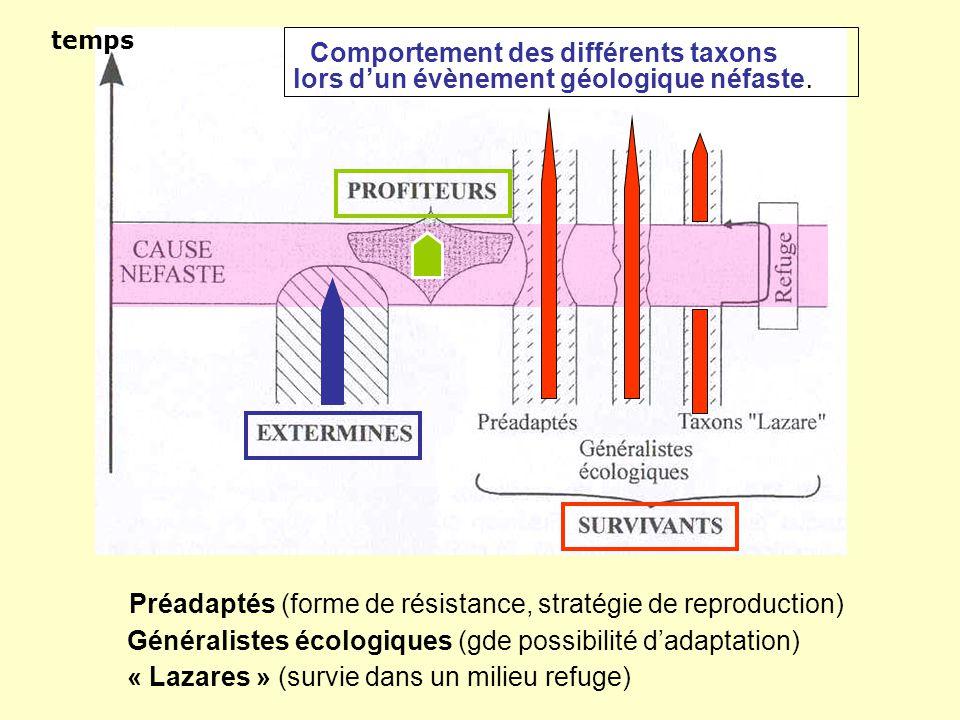 Comportement des différents taxons