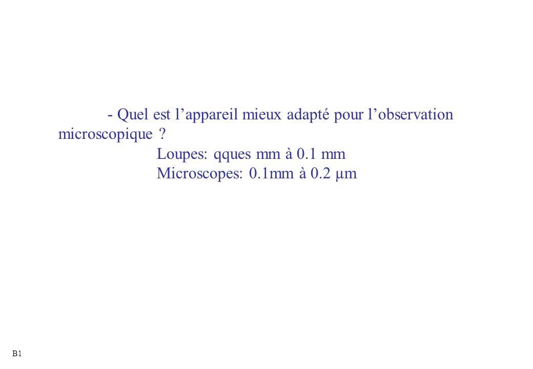 - Quel est l'appareil mieux adapté pour l'observation microscopique