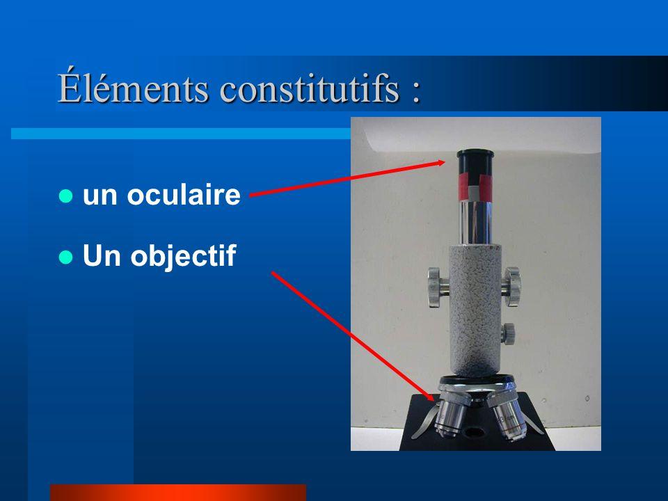 Éléments constitutifs :
