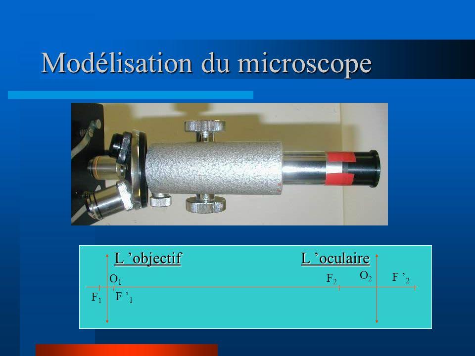 Modélisation du microscope