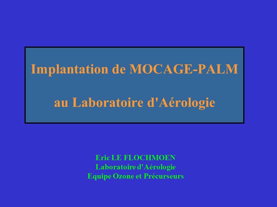 Implantation de MOCAGE-PALM au Laboratoire d Aérologie