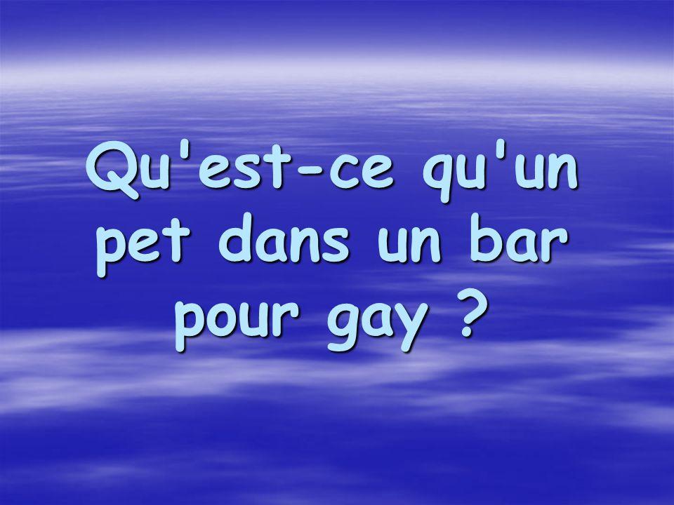 Qu est-ce qu un pet dans un bar pour gay