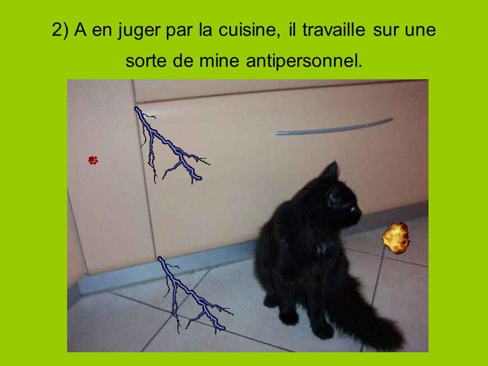 2) A en juger par la cuisine, il travaille sur une sorte de mine antipersonnel.
